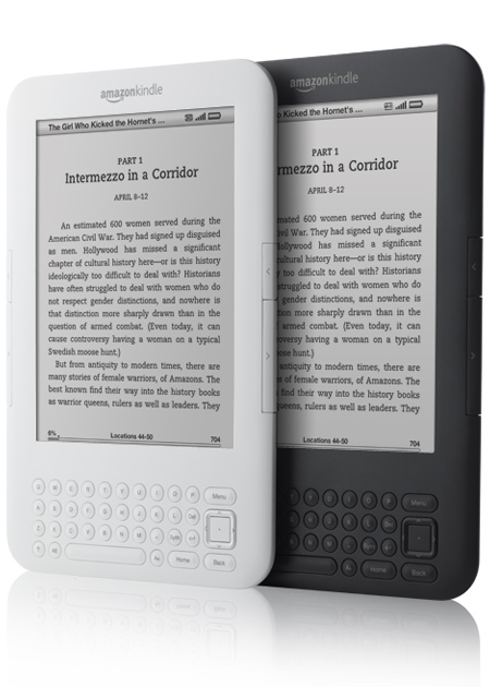 What is So Wonderful About the New Kindle 3G WiFi Wireless Studying Gadget?